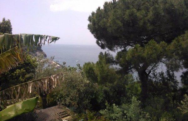 Villa_vendita_Massa_Lubrense_foto_print_532049226