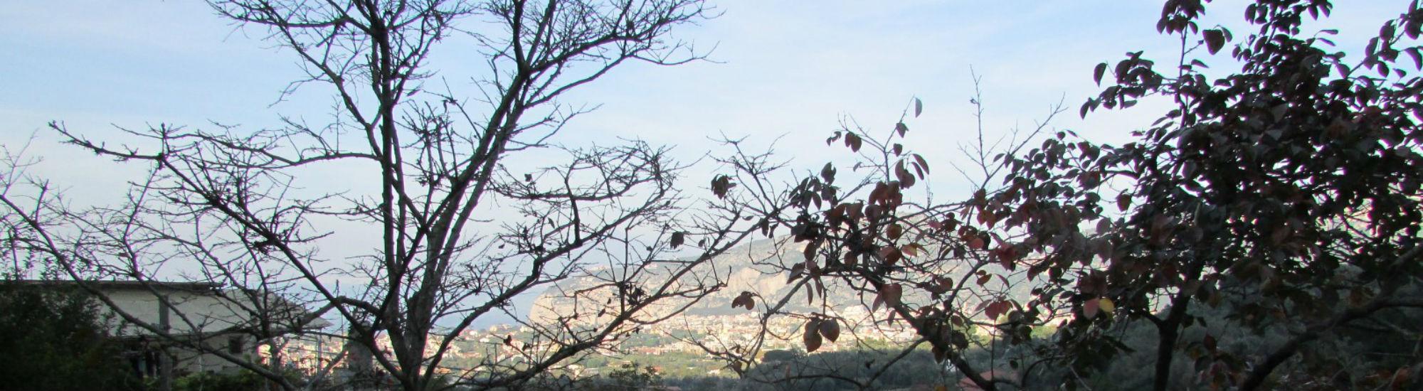 Sant'Agnello Trasaella